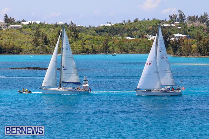 ARC-Europe-Sailing-Rally-Bermuda-May-16-2018-5089