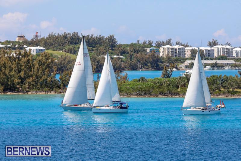 ARC-Europe-Sailing-Rally-Bermuda-May-16-2018-5093