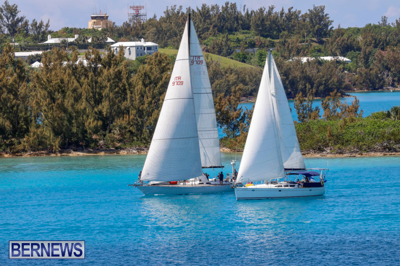 ARC-Europe-Sailing-Rally-Bermuda-May-16-2018-5095