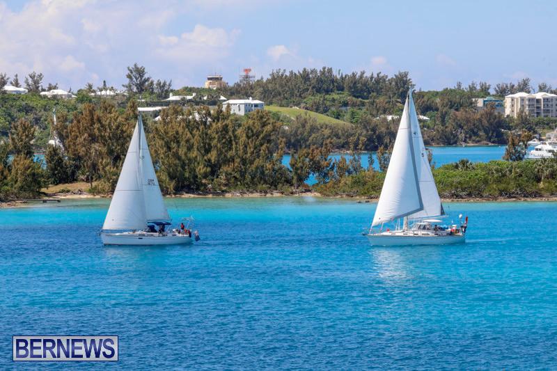 ARC-Europe-Sailing-Rally-Bermuda-May-16-2018-5104