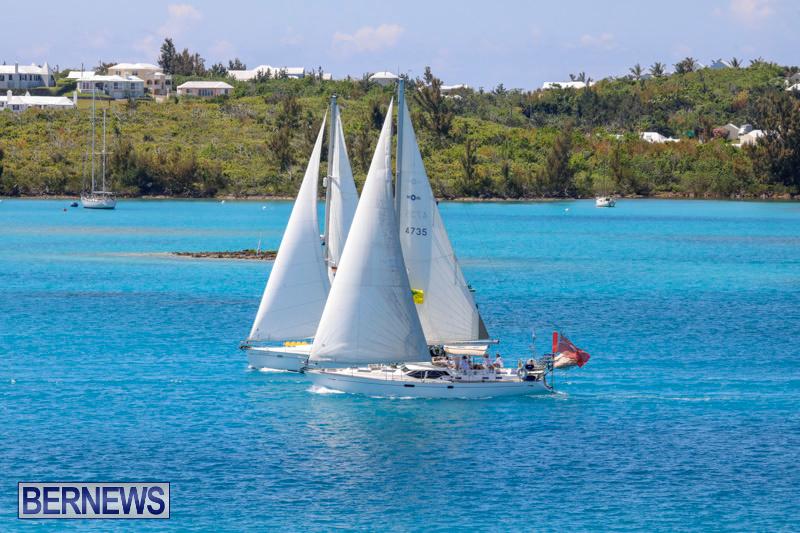 ARC-Europe-Sailing-Rally-Bermuda-May-16-2018-5106