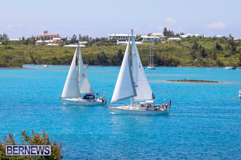 ARC-Europe-Sailing-Rally-Bermuda-May-16-2018-5116