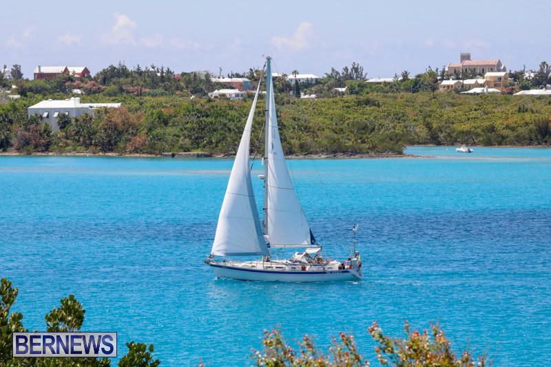 ARC-Europe-Sailing-Rally-Bermuda-May-16-2018-5134