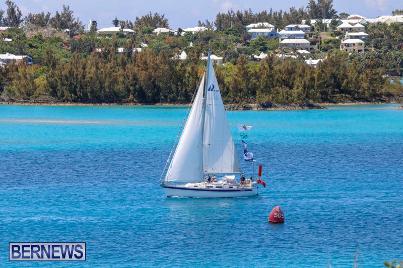 ARC-Europe-Sailing-Rally-Bermuda-May-16-2018-5136
