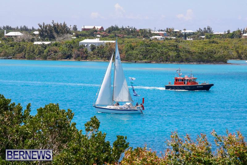 ARC-Europe-Sailing-Rally-Bermuda-May-16-2018-5142