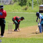 Cricket Bermuda May 30 2018 (19)