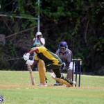 Cricket Bermuda May 30 2018 (4)