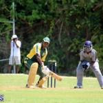 Cricket Bermuda May 30 2018 (5)