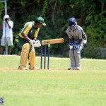 Cricket Bermuda May 30 2018 (6)