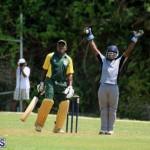 Cricket Bermuda May 30 2018 (8)