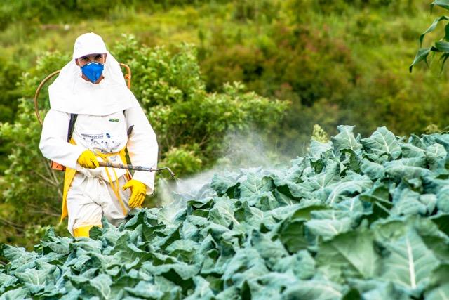 Monsanto Bermuda May 14 2018