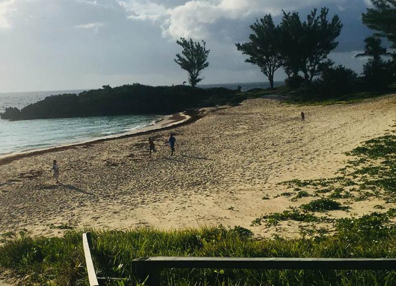 Morning runs at John Smith's Bay Bermuda May 2018