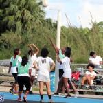 Netball Bermuda May 30 2018 (1)