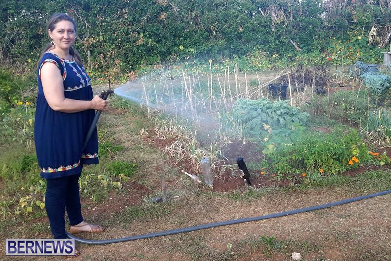Paget-Community-Gardens-Bermuda-May-2017-5 2