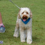 Paws To The Park at the Arboretum Bermuda, May 12 2018-3235