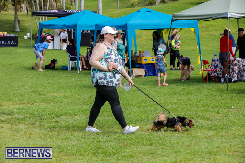 Paws-To-The-Park-at-the-Arboretum-Bermuda-May-12-2018-3237