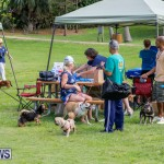 Paws To The Park at the Arboretum Bermuda, May 12 2018-3239