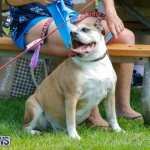 Paws To The Park at the Arboretum Bermuda, May 12 2018-3240