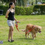 Paws To The Park at the Arboretum Bermuda, May 12 2018-3247