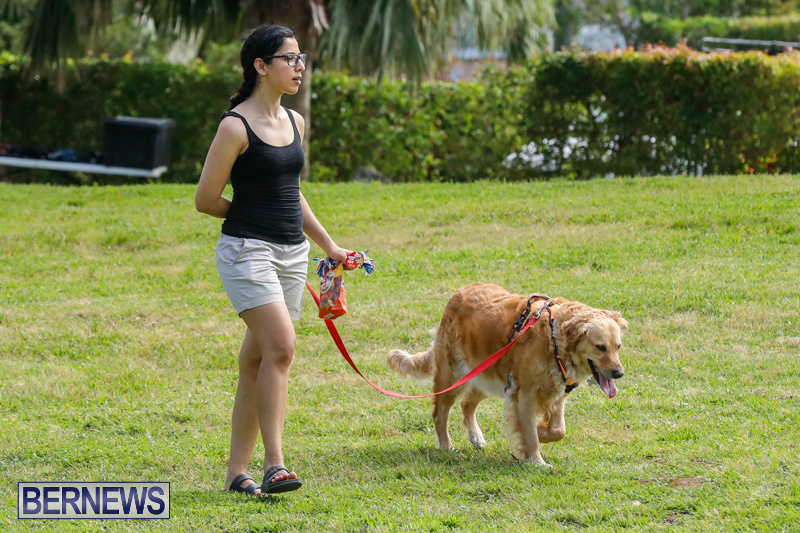 Paws-To-The-Park-at-the-Arboretum-Bermuda-May-12-2018-3247