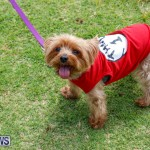 Paws To The Park at the Arboretum Bermuda, May 12 2018-3281