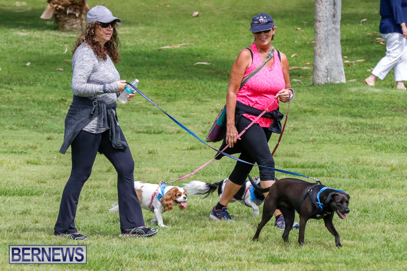 Paws-To-The-Park-at-the-Arboretum-Bermuda-May-12-2018-3305