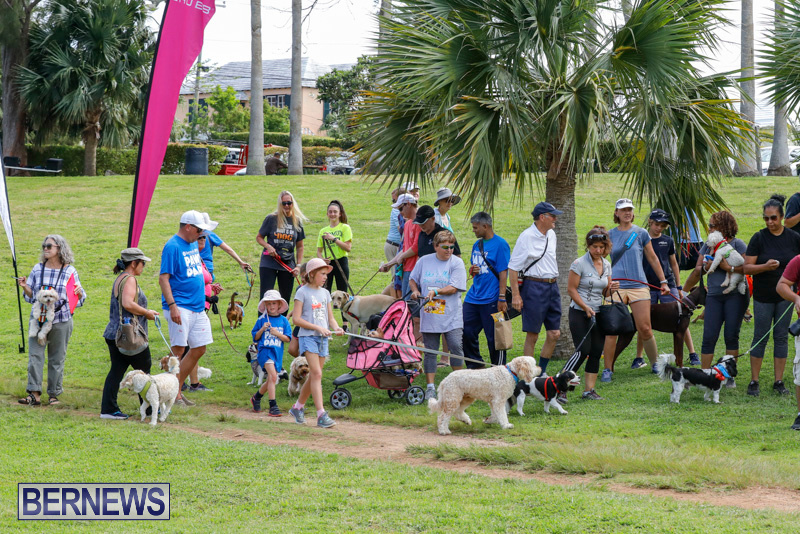 Paws-To-The-Park-at-the-Arboretum-Bermuda-May-12-2018-3321