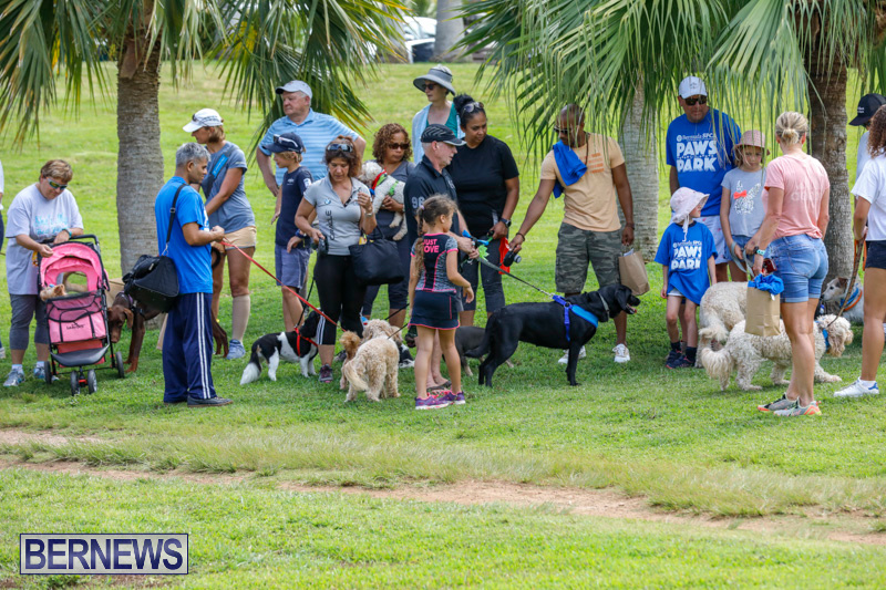 Paws-To-The-Park-at-the-Arboretum-Bermuda-May-12-2018-3335