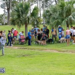 Paws To The Park at the Arboretum Bermuda, May 12 2018-3337