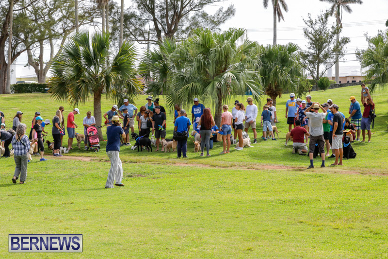 Paws-To-The-Park-at-the-Arboretum-Bermuda-May-12-2018-3339