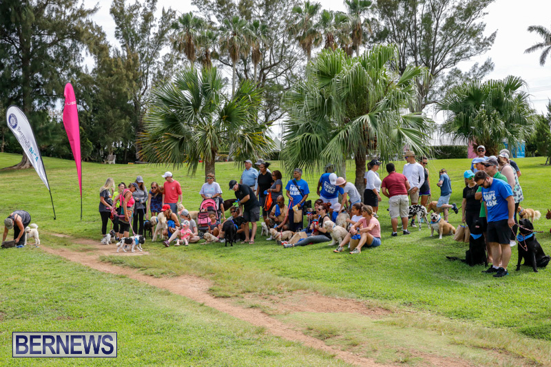 Paws-To-The-Park-at-the-Arboretum-Bermuda-May-12-2018-3343