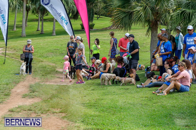 Paws-To-The-Park-at-the-Arboretum-Bermuda-May-12-2018-3346