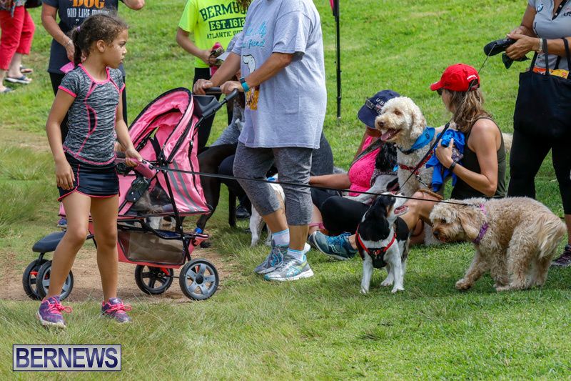 Paws-To-The-Park-at-the-Arboretum-Bermuda-May-12-2018-3350