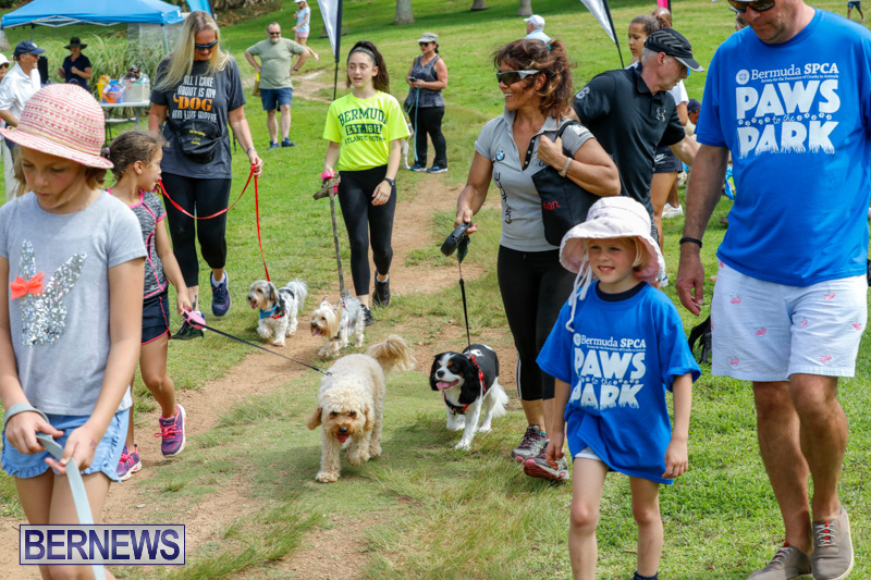 Paws-To-The-Park-at-the-Arboretum-Bermuda-May-12-2018-3372
