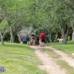 Paws To The Park at the Arboretum Bermuda, May 12 2018-3439