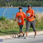 XL Catlin End-To-End Bermuda, May 5 2018-1253