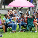 Bermuda Heroes Weekend Pan In The Park Event, June 17 2018-3883