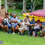 Bermuda Heroes Weekend Pan In The Park Event, June 17 2018-3886