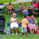 Bermuda Heroes Weekend Pan In The Park Event, June 17 2018-3900