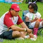 Bermuda Heroes Weekend Pan In The Park Event, June 17 2018-3905