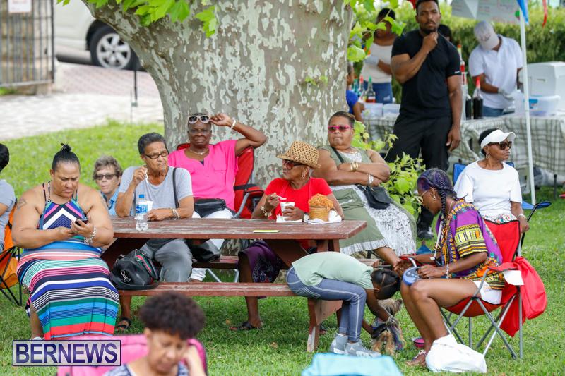 Bermuda-Heroes-Weekend-Pan-In-The-Park-Event-June-17-2018-3913