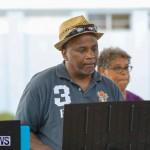 Bermuda Heroes Weekend Pan In The Park Event, June 17 2018-4013