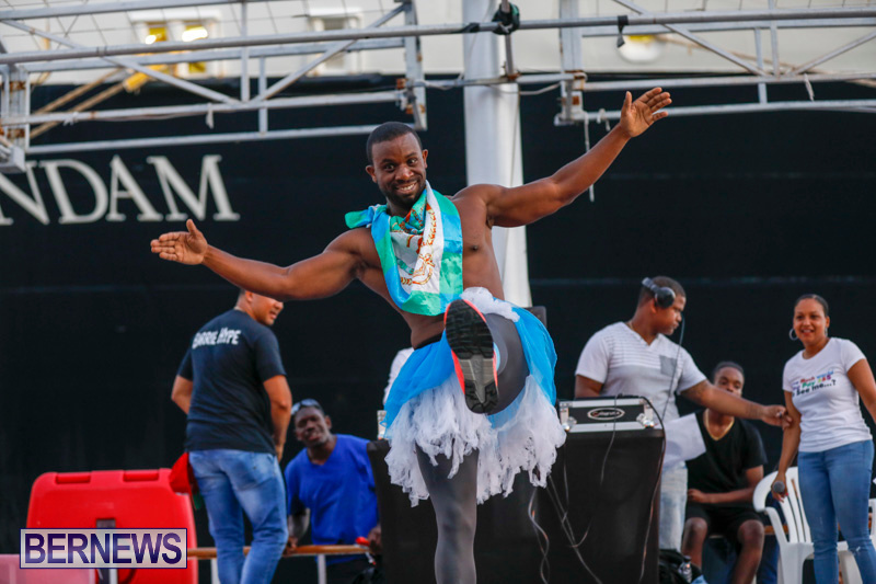 Big-Brothers-Big-Sisters-BBBS-How-Much-Would-You-Pay-To-See-Me-Fundraiser-Bermuda-June-13-2018-2985