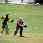 Cricket Bermuda June 13 2018 (10)