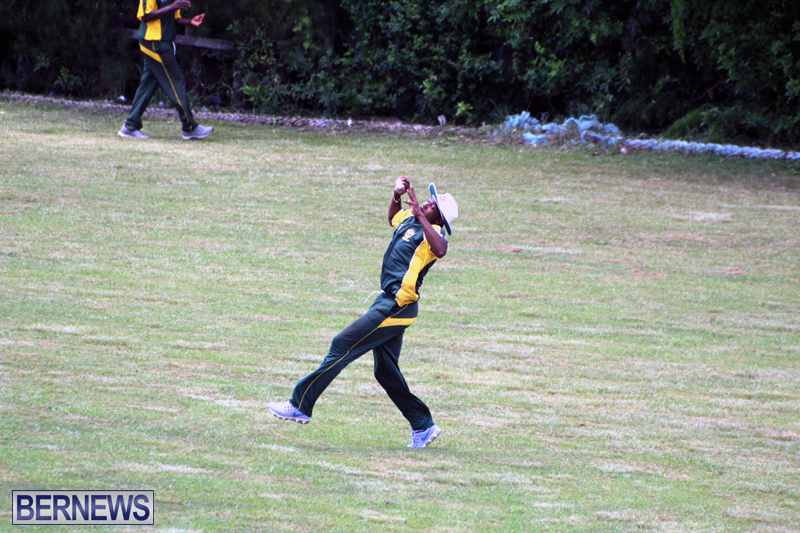 Cricket-Bermuda-June-13-2018-19