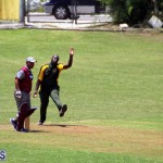 Cricket Bermuda June 13 2018 (2)