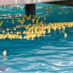 Rubber Duck Derby Bermuda, June 3 2018-2-458