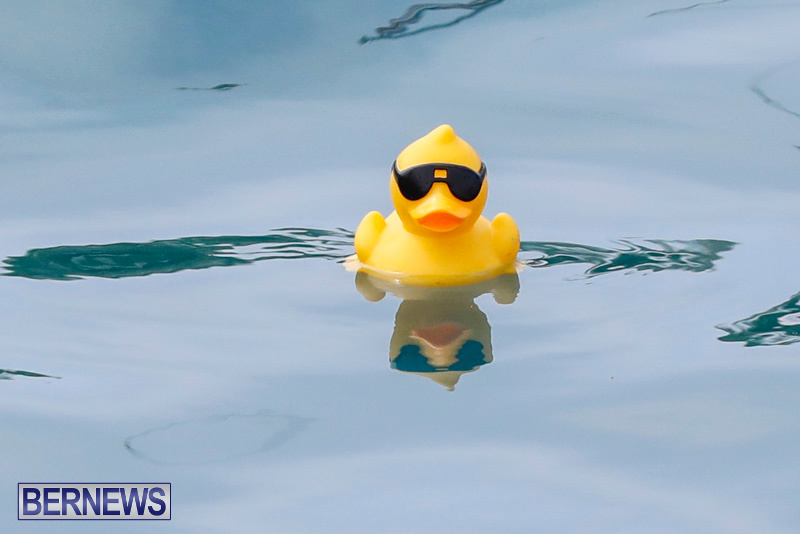 Rubber-Duck-Derby-Bermuda-June-3-2018-2-467