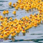 Rubber Duck Derby Bermuda, June 3 2018-2-477