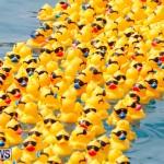 Rubber Duck Derby Bermuda, June 3 2018-2-481